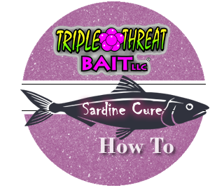 Triple Threat Sardine Cure