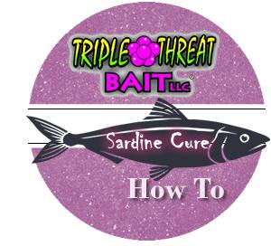 Triple Threat Sardine Cure