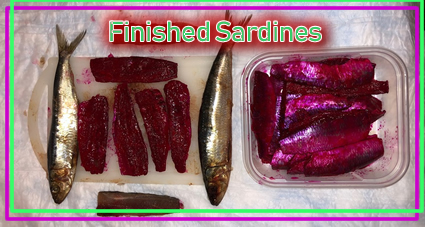 Things You need for Sardine Cure